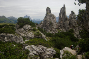 A selection of the magical finger like spires jutting out that make up the Pinnacles