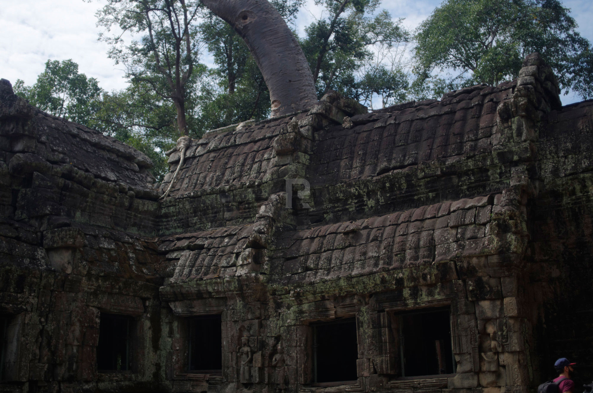 Exploring Ta Prohm and a Little History