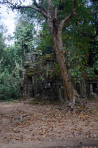 A building Just outside of Ta Prohm